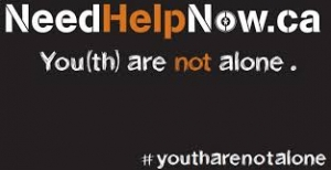 needhelpnow